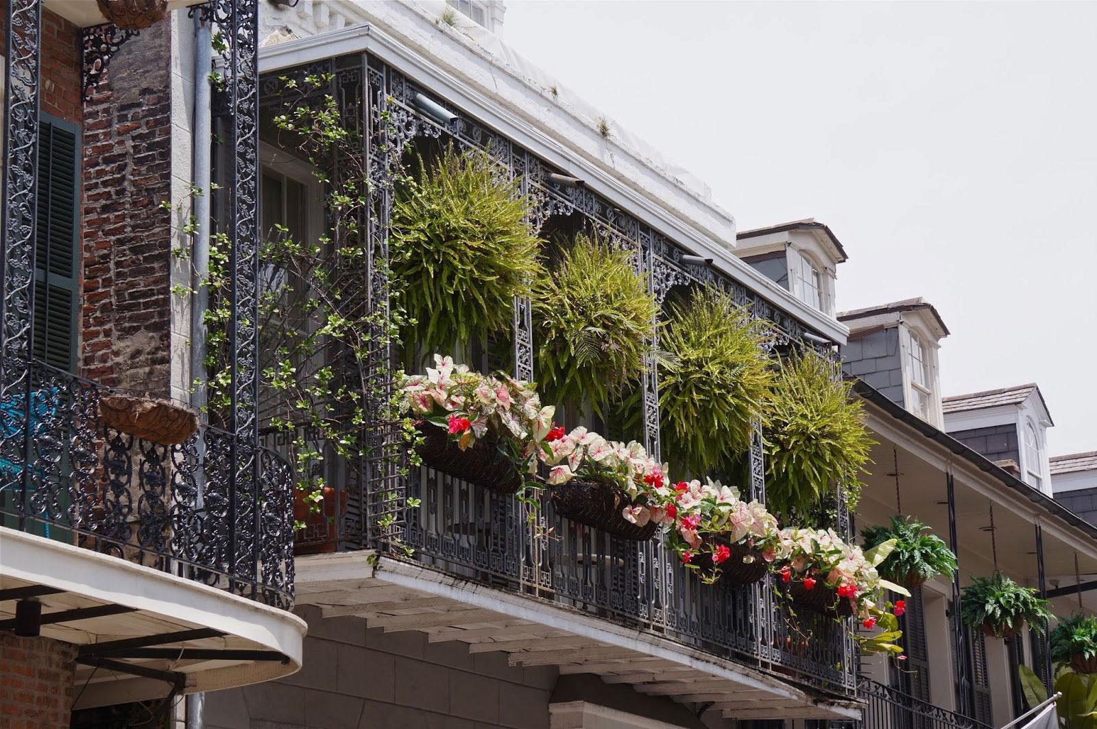 Ограждение для балкона с растениями